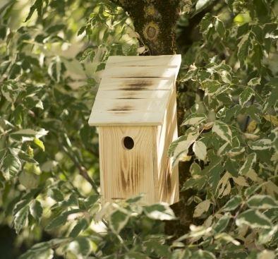nichoir m sange bleu et petits oiseaux. Black Bedroom Furniture Sets. Home Design Ideas
