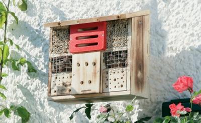 H tel insectes au tilleul for Hotel a insecte acheter